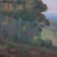 sugarloaf-ridge-2