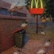 McRubbish-210x300mm-pastelWEB